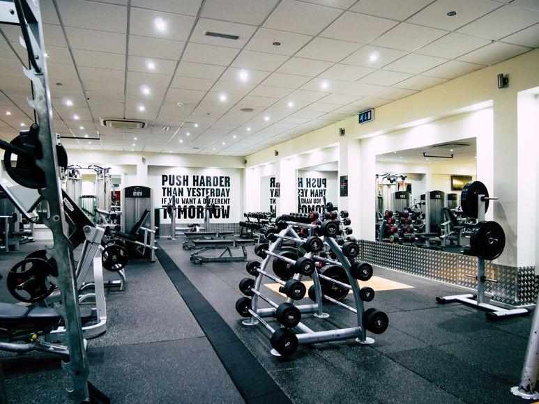 Matthew Arnold   Lifestyle & Fitness    9