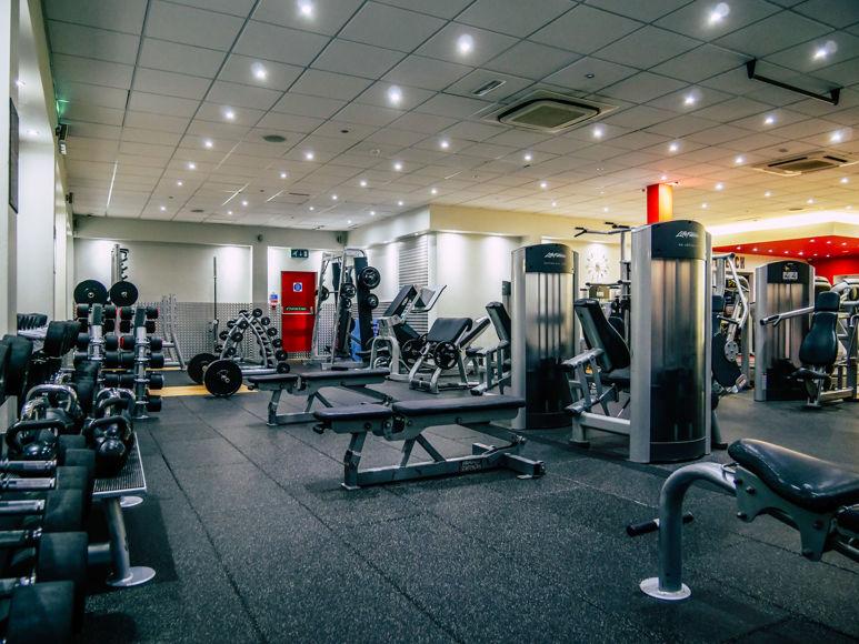 Matthew Arnold   Lifestyle & Fitness    11