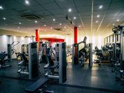 Matthew Arnold   Lifestyle & Fitness    13