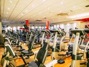 Matthew Arnold   Lifestyle & Fitness    15