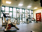 Matthew Arnold   Lifestyle & Fitness    26